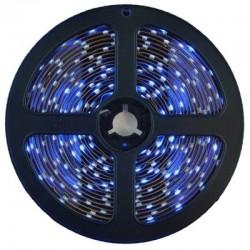 BANDA LED, 2835, IP65, ALBASTRU